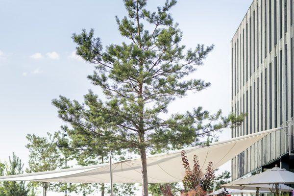 Garten und Außenansicht Bader Hotel